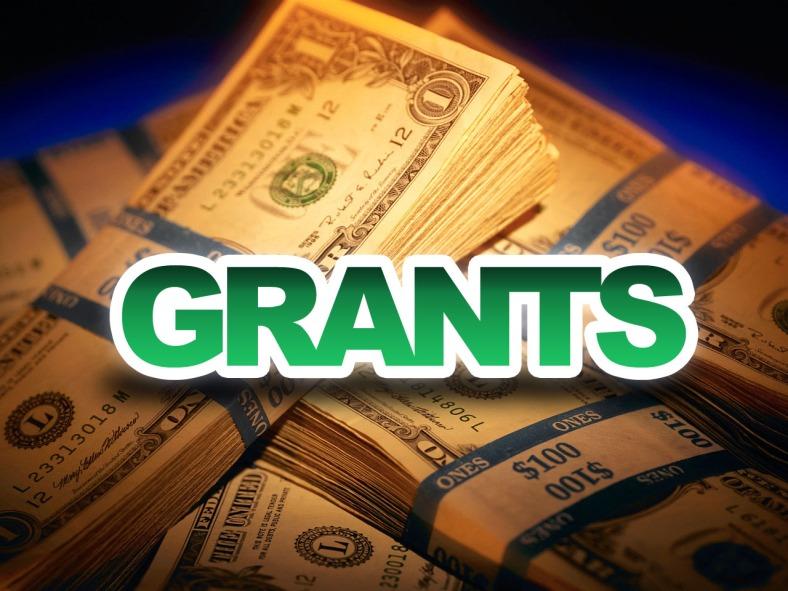 Govt Grants